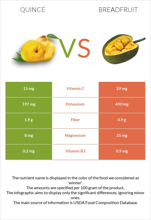 Quince vs Breadfruit infographic