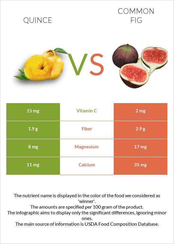 Quince vs Common fig infographic