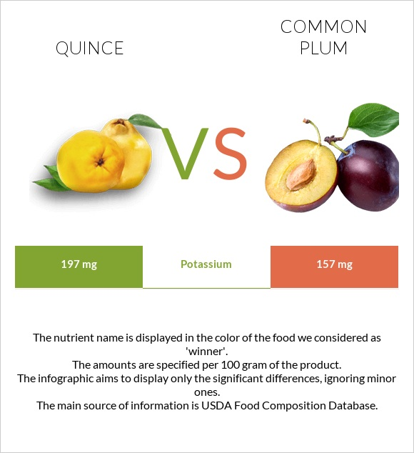 Quince vs Common plum infographic