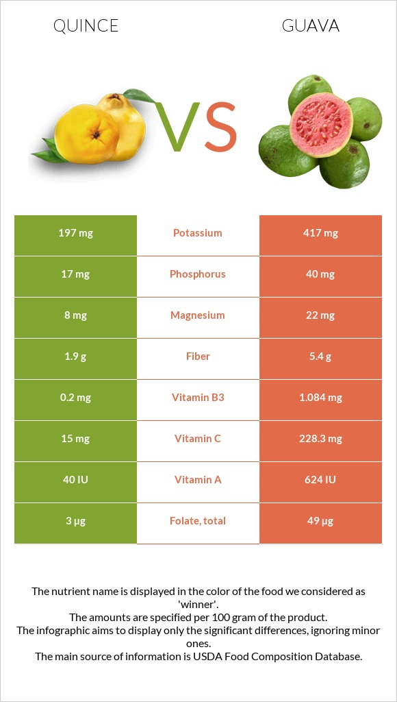 Quince vs Guava infographic