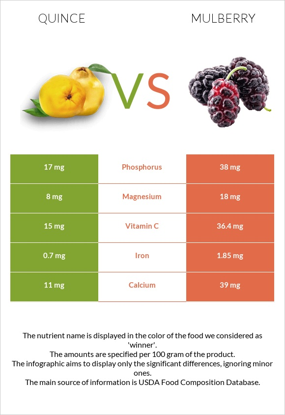 Quince vs Mulberry infographic