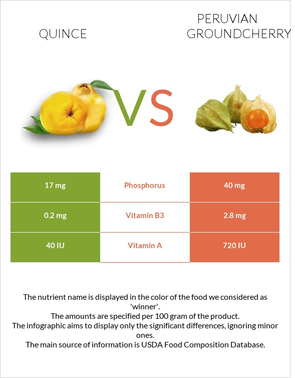 Quince vs Peruvian groundcherry infographic