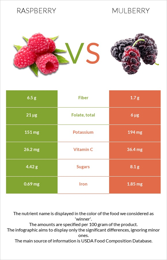 Raspberry vs Mulberry infographic