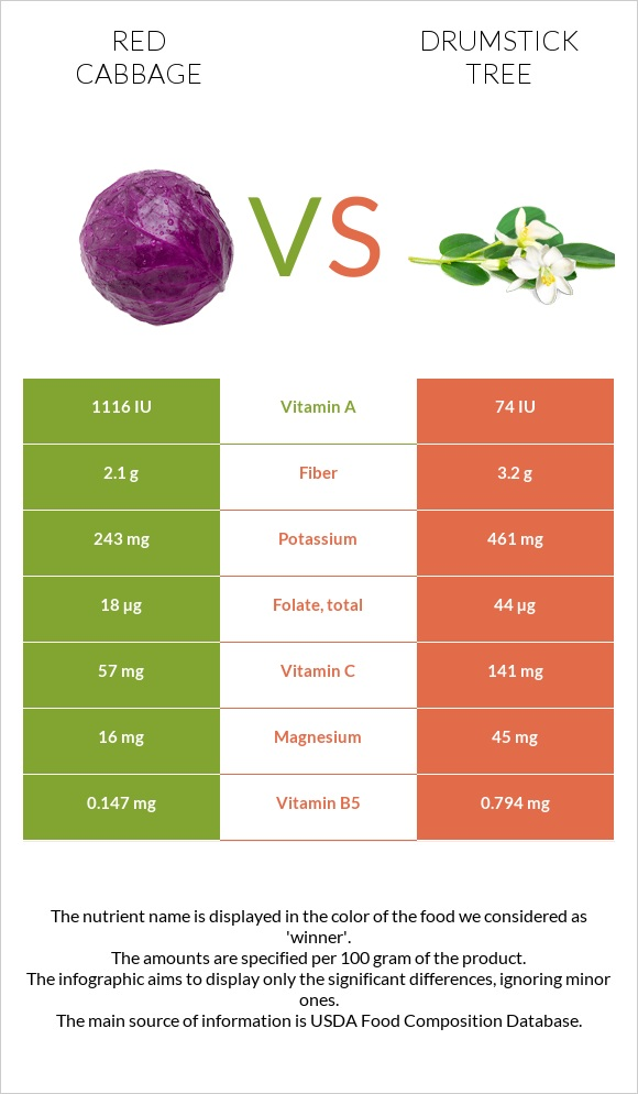 Red cabbage vs Drumstick tree infographic