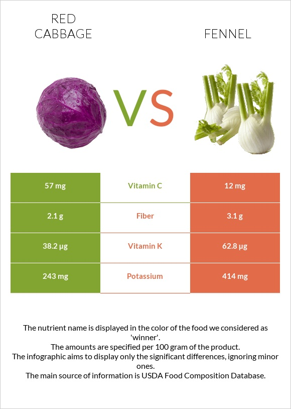 Red cabbage vs Fennel infographic