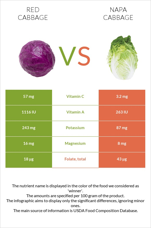 Red cabbage vs Napa cabbage infographic