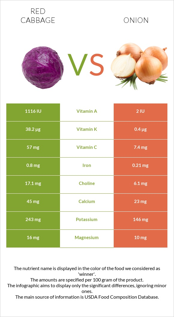 Red cabbage vs Onion infographic