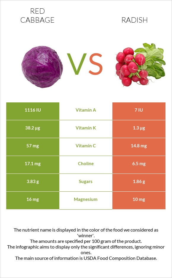 Red cabbage vs Radish infographic