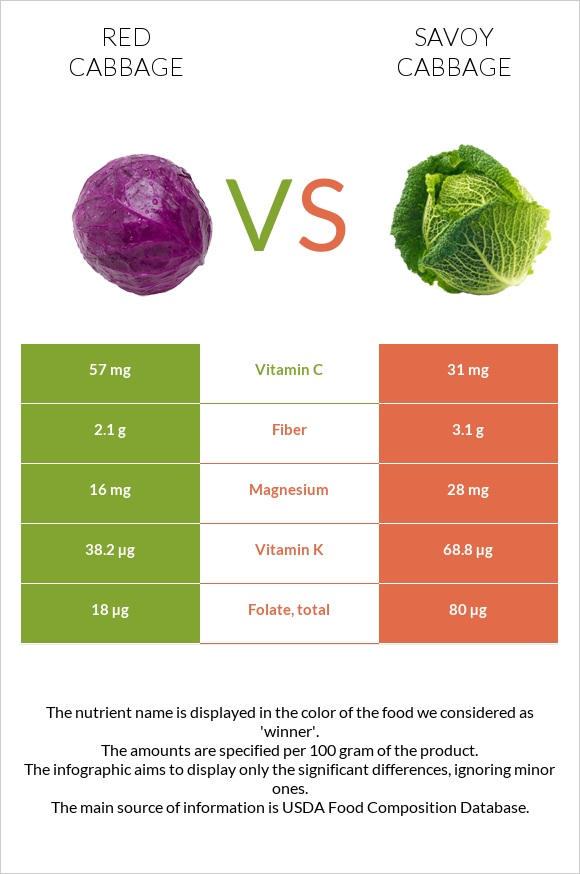 Red cabbage vs Savoy cabbage infographic