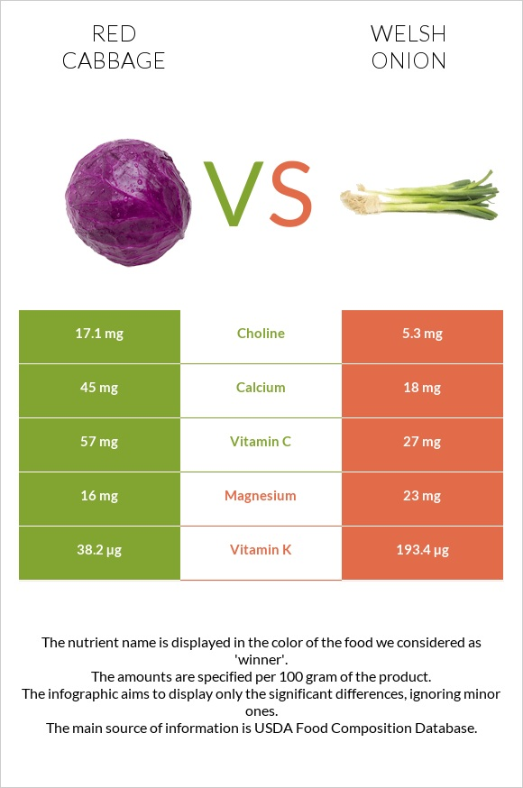 Red cabbage vs Welsh onion infographic
