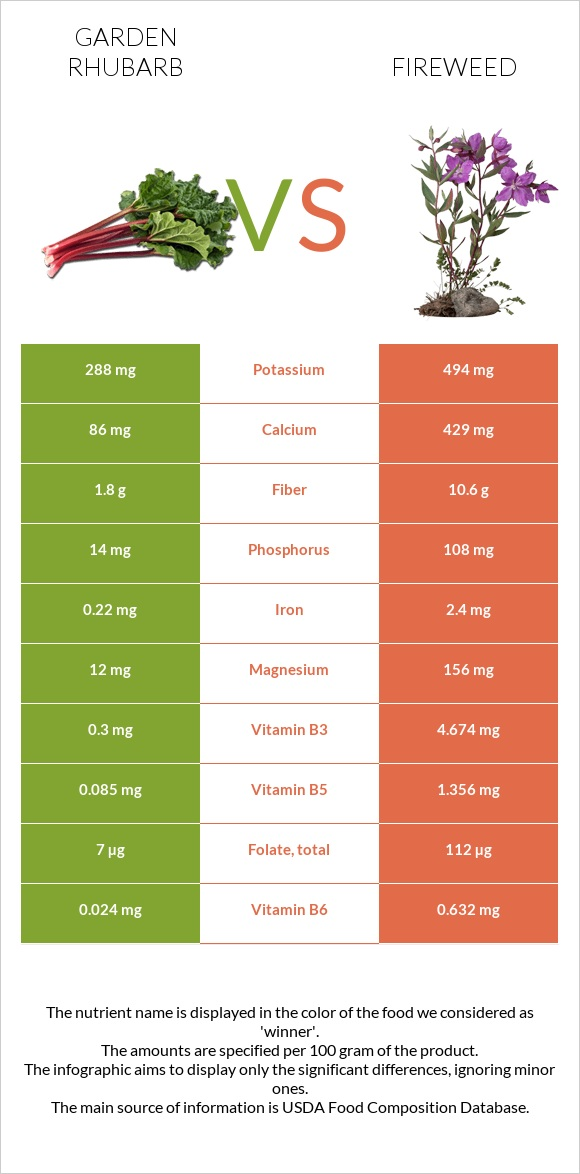 Garden rhubarb vs Fireweed infographic