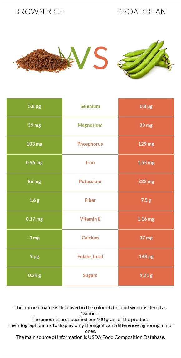 Brown rice vs Broad bean infographic