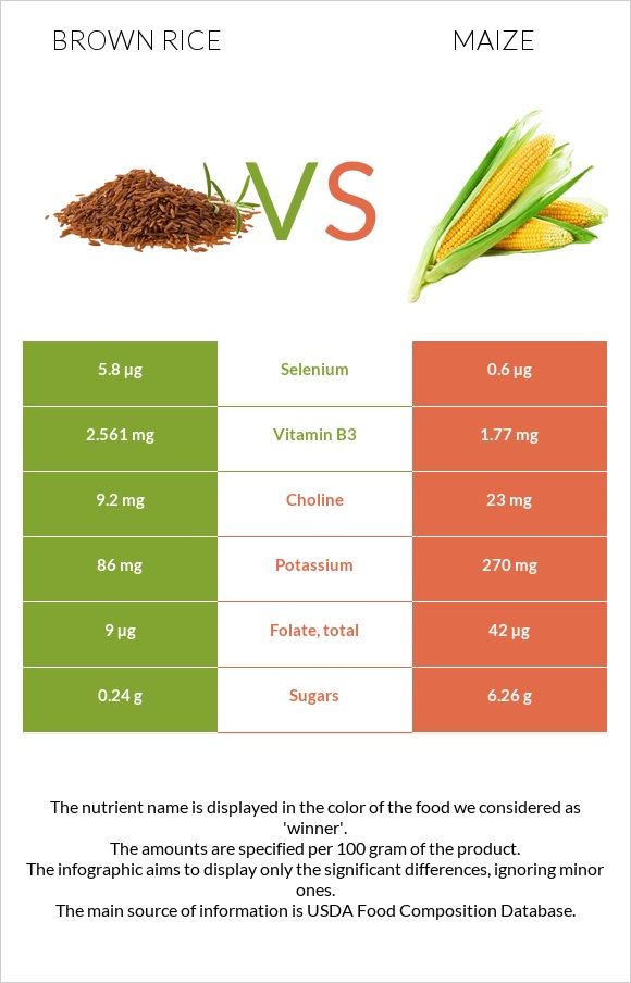 Brown rice vs Maize infographic