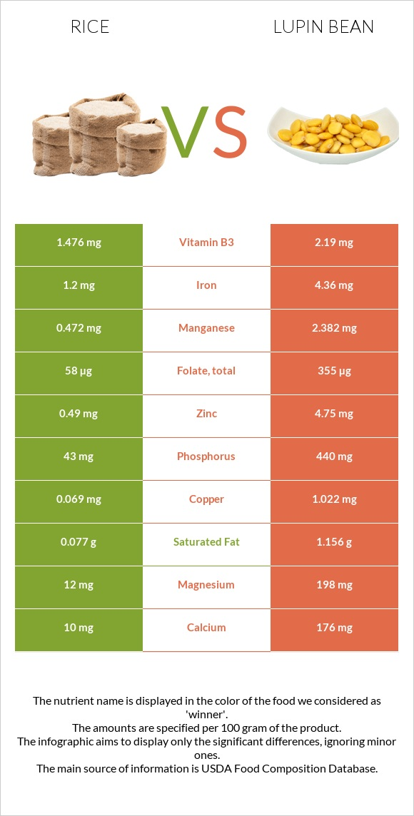 Rice vs Lupin Bean infographic
