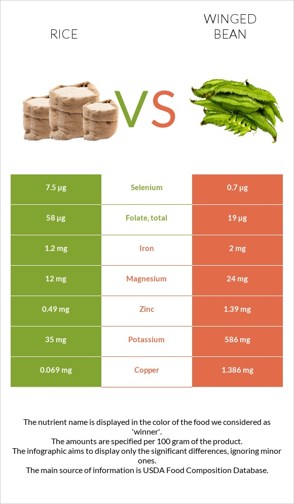 Rice vs Winged bean infographic
