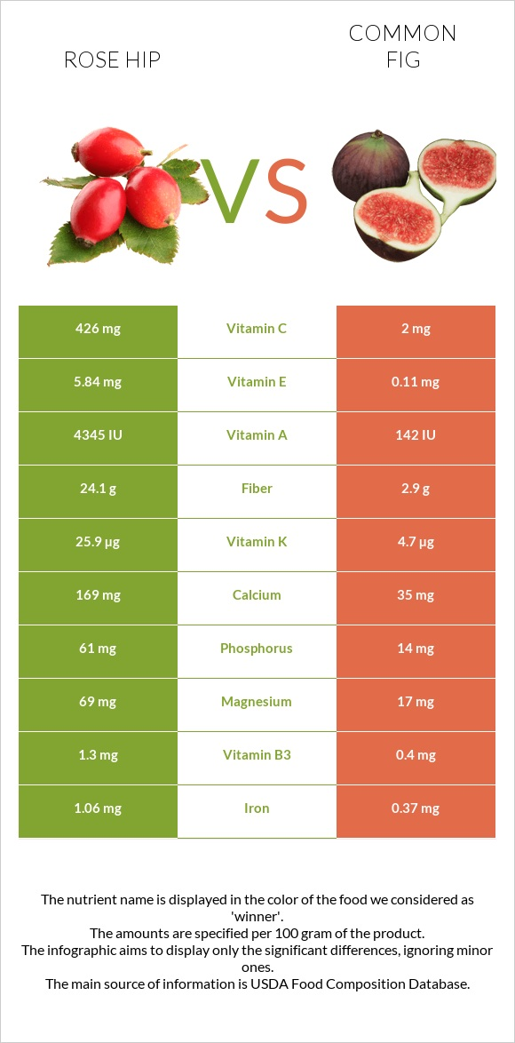 Rose hip vs Common fig infographic