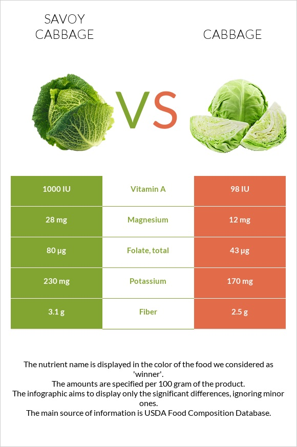 Savoy cabbage vs Cabbage infographic
