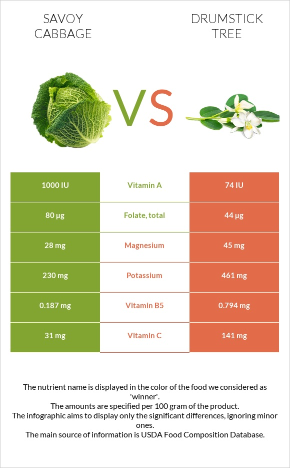 Savoy cabbage vs Drumstick tree infographic