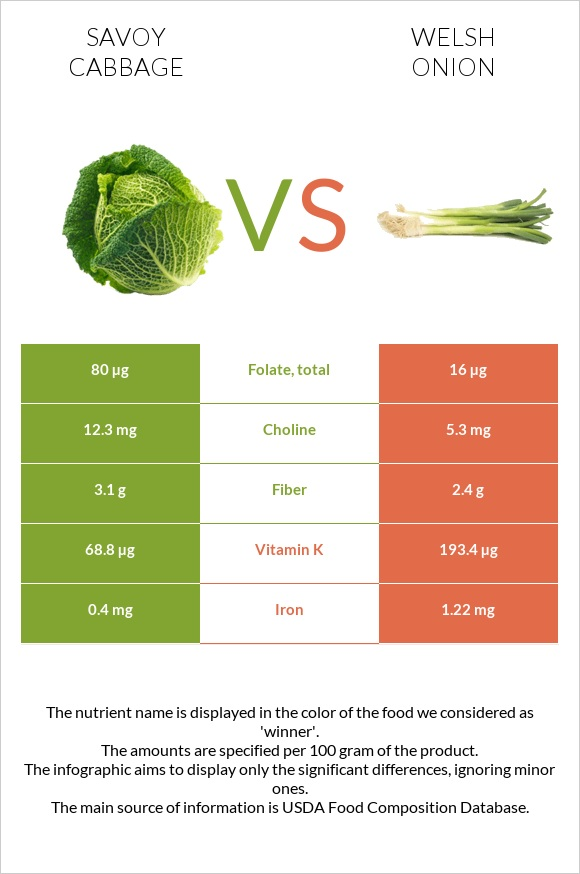 Savoy cabbage vs Welsh onion infographic