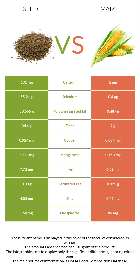 Seed vs Maize infographic