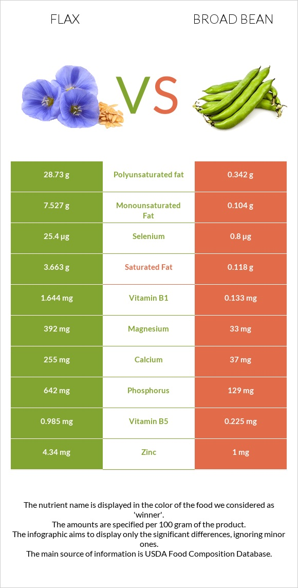 Flax vs Broad bean infographic