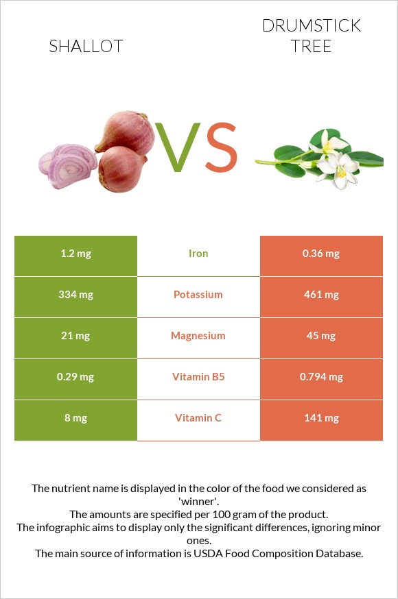 Shallot vs Drumstick tree infographic