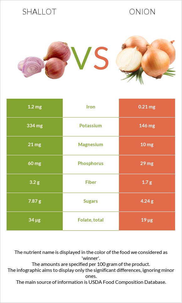 Shallot vs Onion infographic