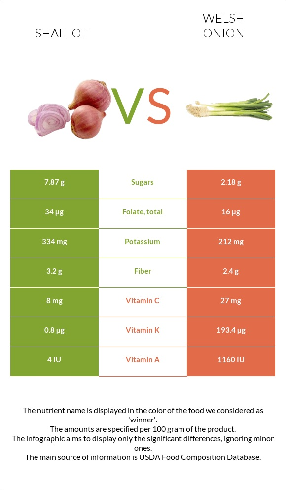 Shallot vs Welsh onion infographic