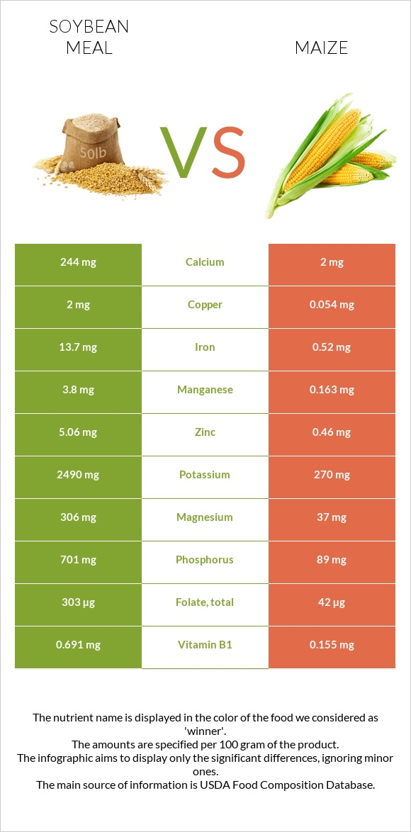 Soybean meal vs Maize infographic
