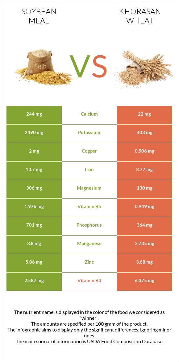 Soybean meal vs Khorasan wheat infographic