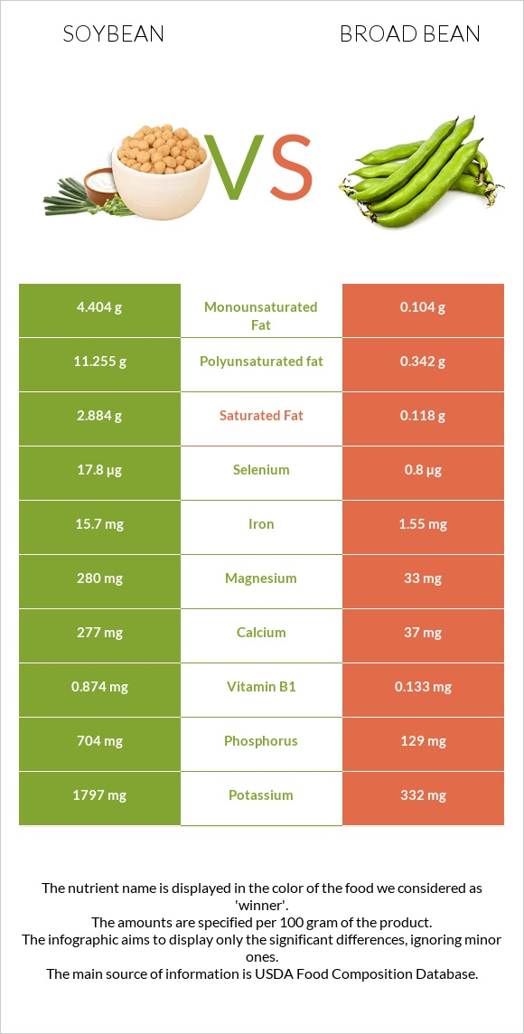 Soybean vs Broad bean infographic