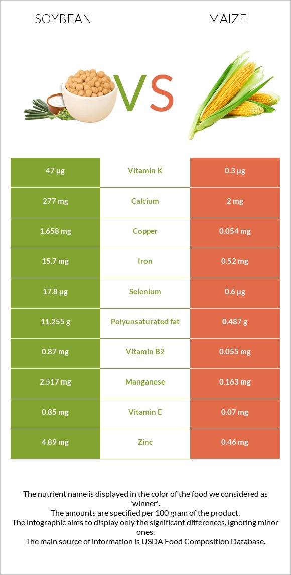 Soybean vs Maize infographic