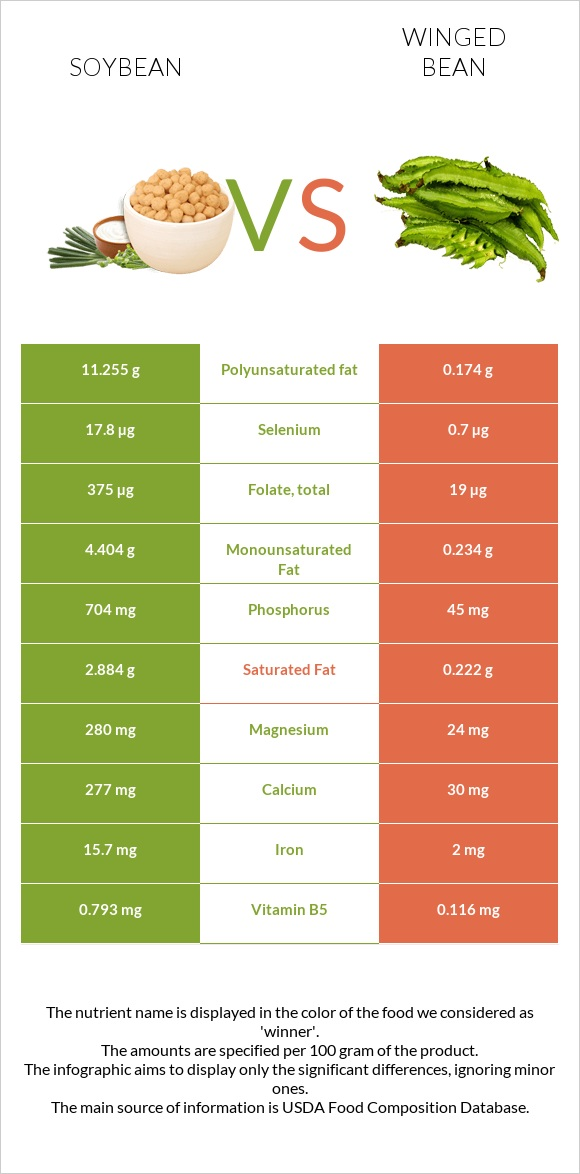 Soybean vs Winged bean infographic