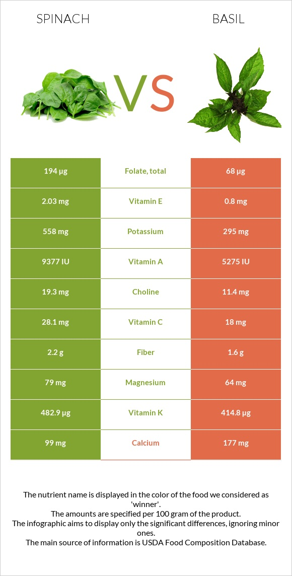 Spinach vs Basil infographic