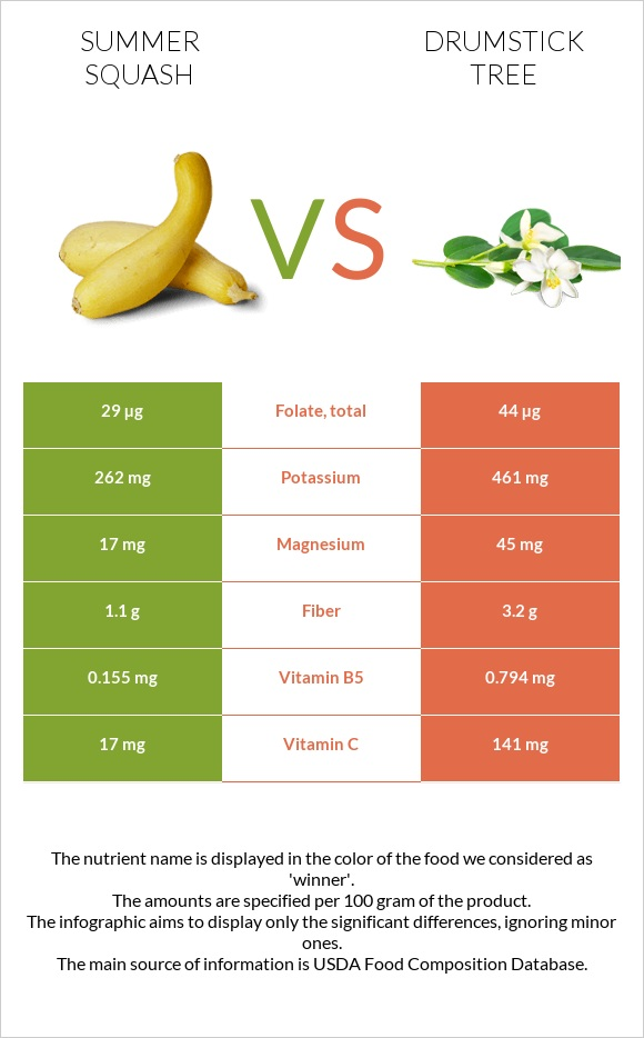 Summer squash vs Drumstick tree infographic