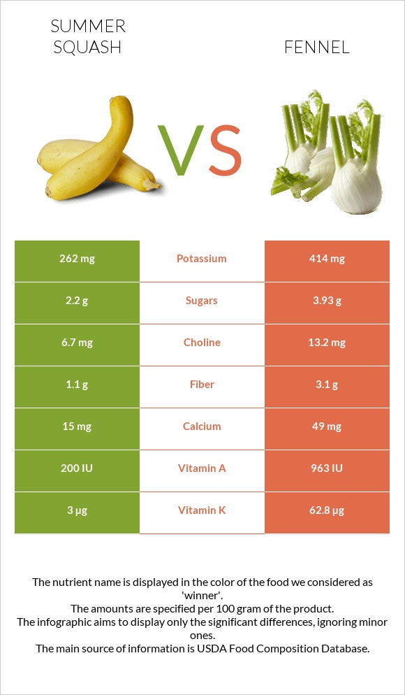 Summer squash vs Fennel infographic