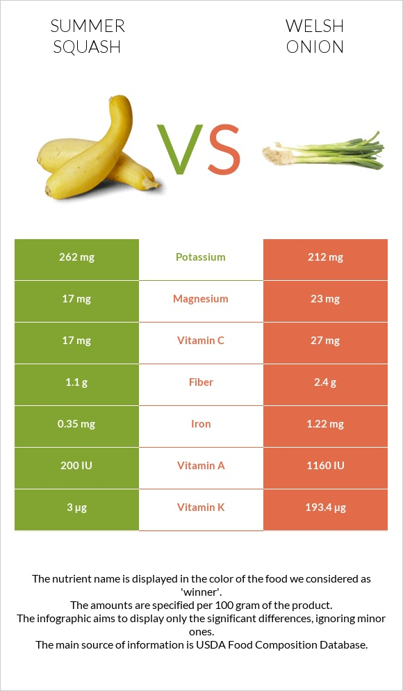 Summer squash vs Welsh onion infographic
