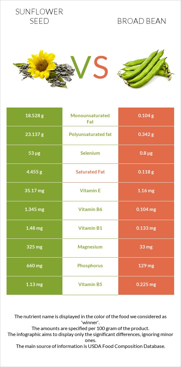 Sunflower seed vs Broad bean infographic