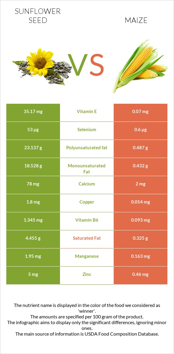 Sunflower seed vs Maize infographic
