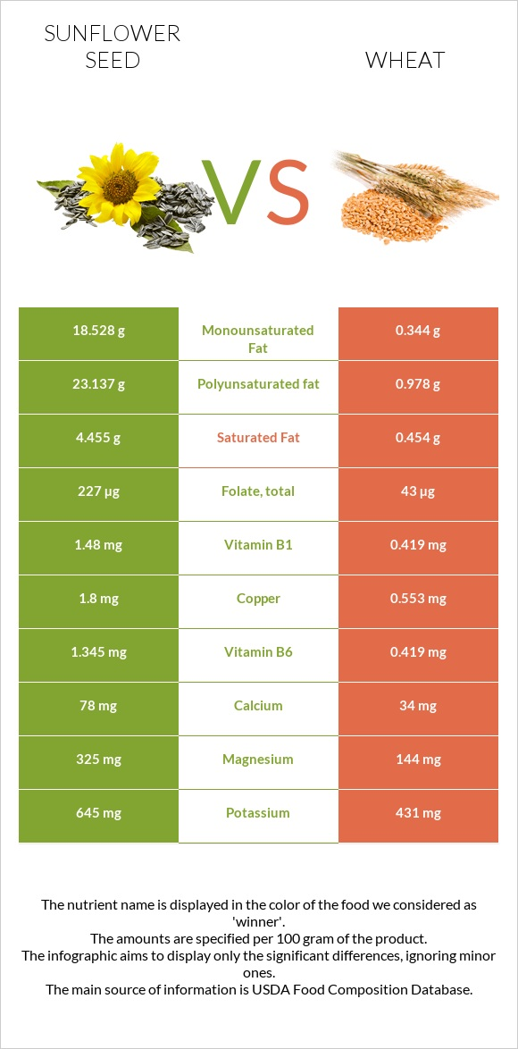 Sunflower seed vs Wheat infographic