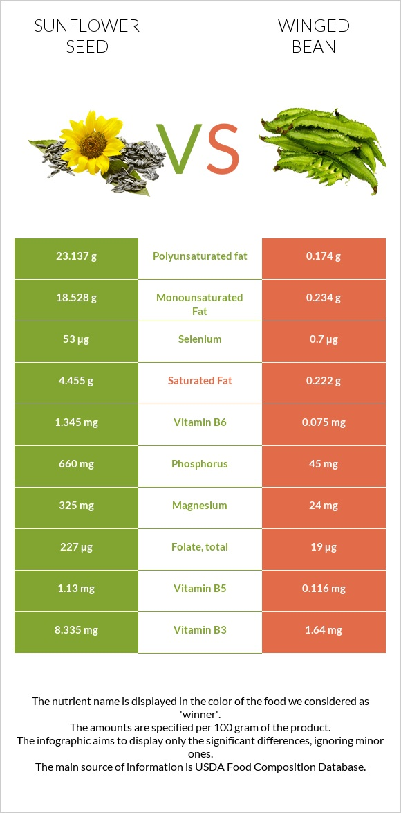 Sunflower seed vs Winged bean infographic