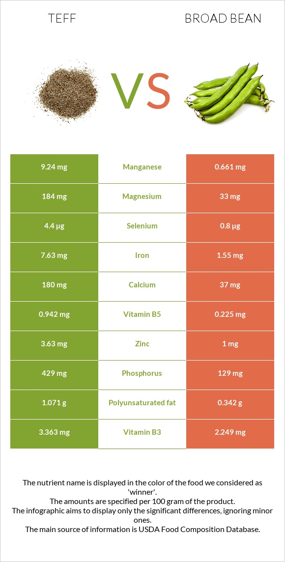 Teff vs Broad bean infographic