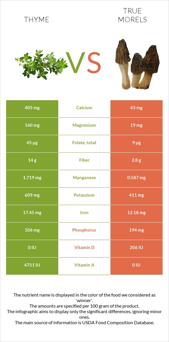 Thyme vs True morels infographic