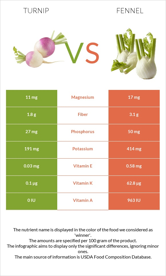 Turnip vs Fennel infographic