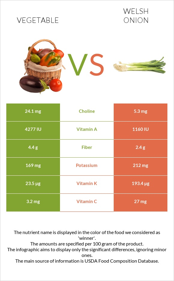 Vegetable vs Welsh onion infographic