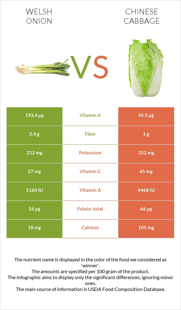 Welsh onion vs Chinese cabbage infographic