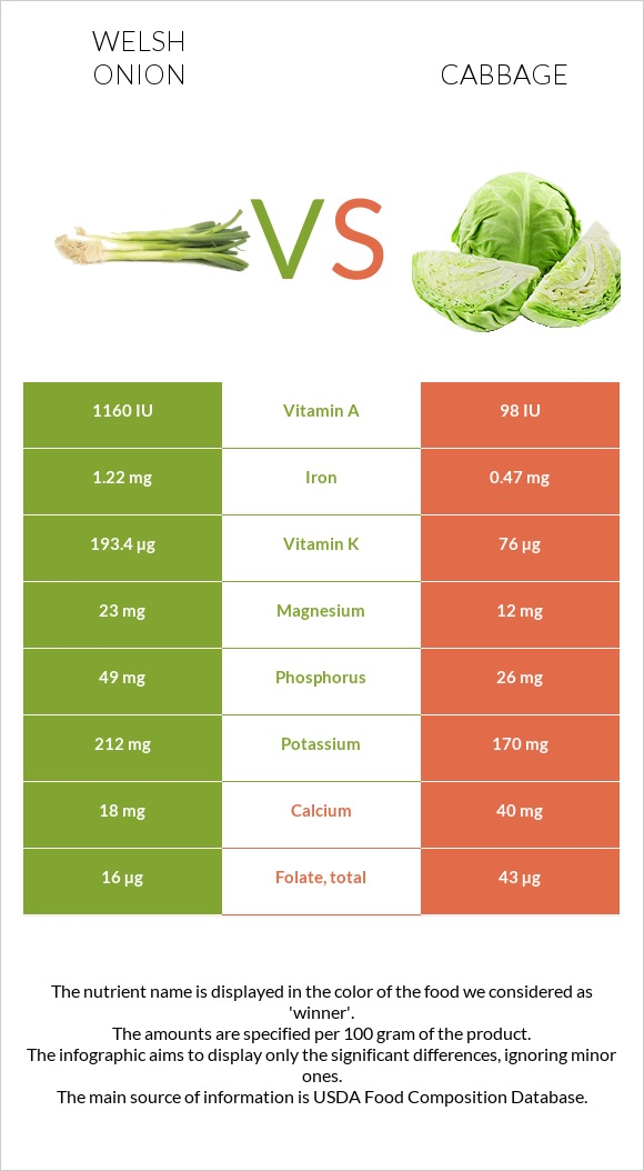Welsh onion vs Cabbage infographic