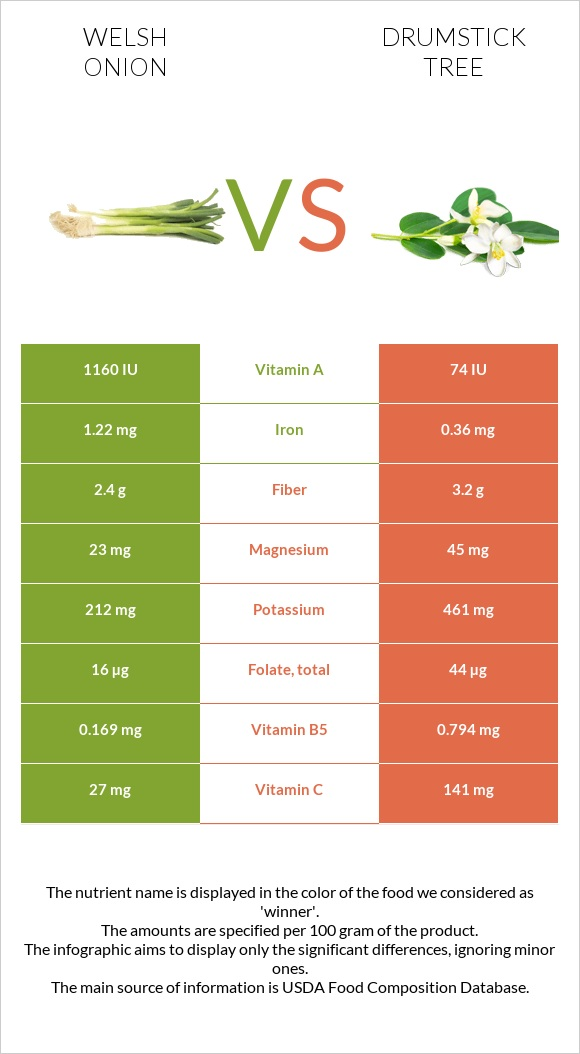 Welsh onion vs Drumstick tree infographic