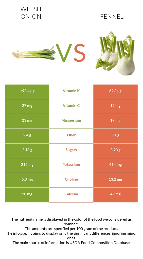 Welsh onion vs Fennel infographic