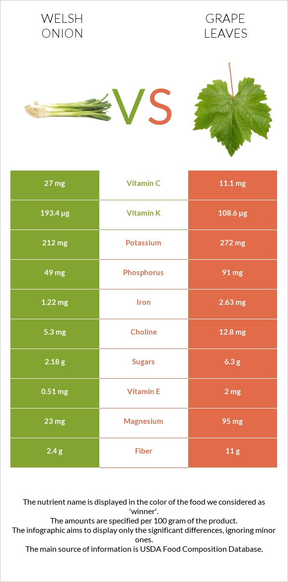 Welsh onion vs Grape leaves infographic